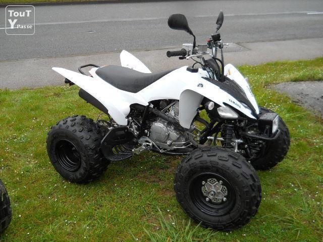 quad 125 monster