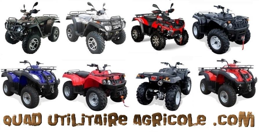 quad electrique agricole
