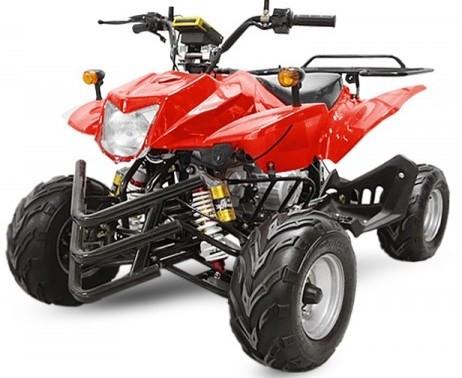 quad homologue 2 places 50cc