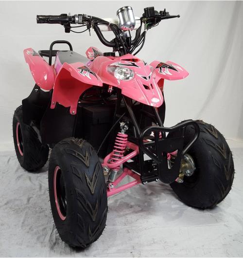 quad raptor a vendre pas cher